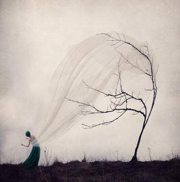 Kylli Sparre WOMAN CAUGHT IN TREE COVERED WITH FABRIC Women