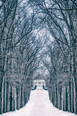 Evelina Kremsdorf HOUSE AT END OF SNOWY TREE LINED DRIVE Houses