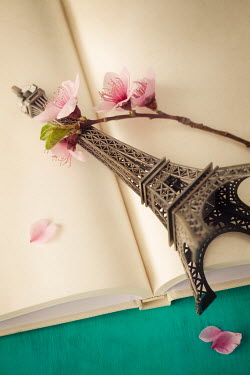 Amy Weiss EIFFEL TOWER ORNAMENT AND FLOWERS INDOORS Miscellaneous Objects