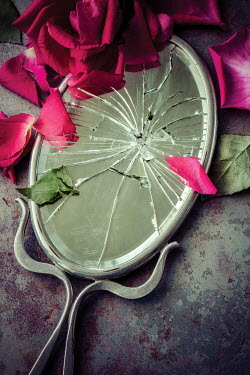 Amy Weiss CRACKED MIRROR BESIDE FLOWER PETALS INDOORS Miscellaneous Objects