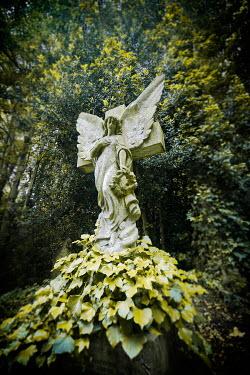 Christophe Dessaigne ANGEL STATUE IN LEAFY COUNTRYSIDE Statuary/Gravestones