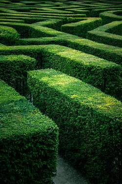 Paul Grand MAZE OF GREEN HEDGE PATHS Paths/Tracks