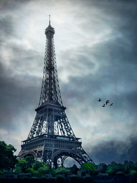 Emma Goulder EIFFEL TOWER AND BIRDS UNDER STORMY SKY Miscellaneous Cities/Towns