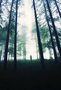 Felicia Simion DISTANT WOMAN STANDING IN WOODS Women