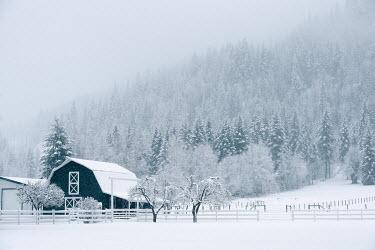 Viktoria Haack FARMHOUSE IN SNOWY COUNTRYSIDE Houses