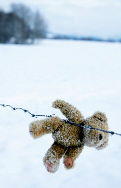Ilona Wellmann TEDDY BEAR ON BARBED WIRE FENCE Miscellaneous Objects