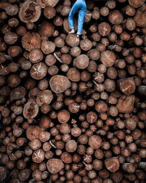 Amelie Satzger YOUNG WOMAN CLIMBING LOG PILE Women