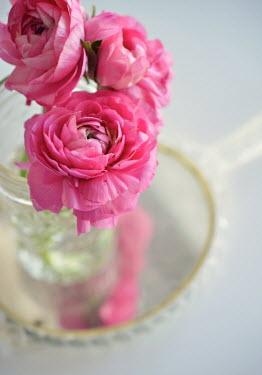 Elle Moss VASE OF FLOWERS ON HAND MIRROR Flowers
