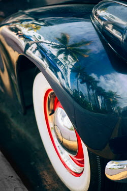 Elisabeth Ansley CLASSIC CAR REFLECTING PALM TREES Cars
