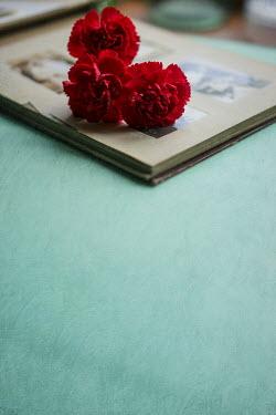 Jill Ferry FLOWERS ON PHOTO ALBUM Flowers