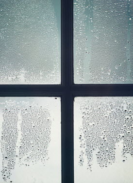 Mark Owen CONDENSATION ON WINDOW Interiors/Rooms