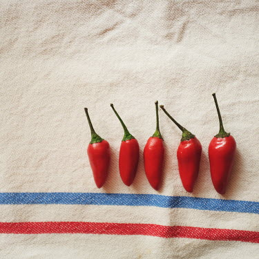 Nina's Clicks FIVE RED CHILLIES IN A ROW Miscellaneous Objects