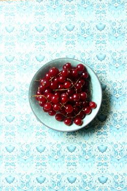Nicole Wustrack BOWL OF RED BERRIES Miscellaneous Objects