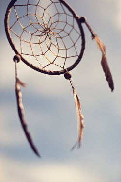Susan O'Connor DREAM CATCHER Miscellaneous Objects