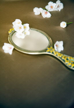 Miguel Sobreira HAND MIRROR AND WHITE FLOWERS Flowers