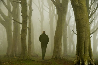 Maggie Brodie MAN WALKING IN MISTY WOODS Men