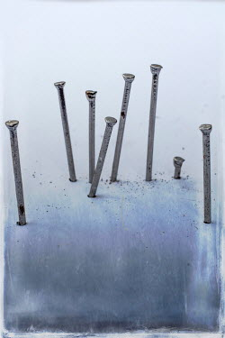 Benjamin Harte CLOSE UP OF EIGHT METAL NAILS Miscellaneous Objects