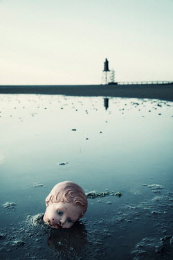 Carmen Spitznagel DOLLS HEAD LYING IN MUDDY SEA Miscellaneous Objects