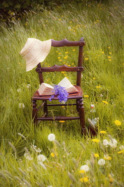 Vesna Armstrong BOOK AND HAT ON CHAIR IN COUNTRYSIDE Miscellaneous Objects