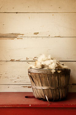 Buffy Cooper SHEEP WOOL IN WOODEN BASKET Miscellaneous Objects