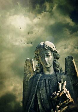 Lyn Randle BIRDS IN STORMY SKY FLYING OVER ANGEL STATUE Statuary/Gravestones