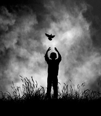 Hengki Lee SILHOUETTE OF BOY RELEASING BIRD Children