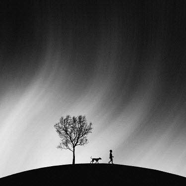 Hengki Lee SILHOUETTE OF BOY AND DOG BESIDE TREE Children