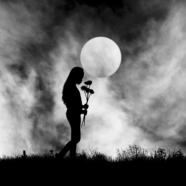 Hengki Lee SILHOUETTE OF WOMAN WITH FLOWERS BY MOON Women