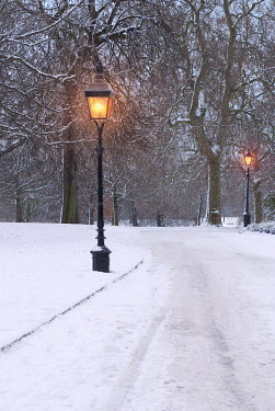 Philip Askew STREET LAMPS AND TREES ON SNOWY ROAD Snow/ Ice