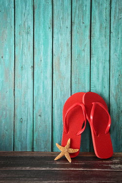 Sandra Cunningham RED FLIP FLOPS AND STARFISH Miscellaneous Objects