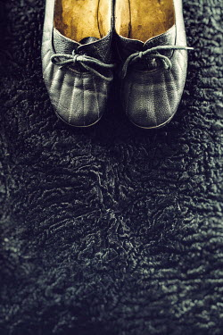 Drunaa RETRO SHOES ON BLACK FUR Miscellaneous Objects