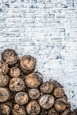 Evelina Kremsdorf PILE OF CHOPPED TREE LOGS BY BRICK WALL Miscellaneous Objects