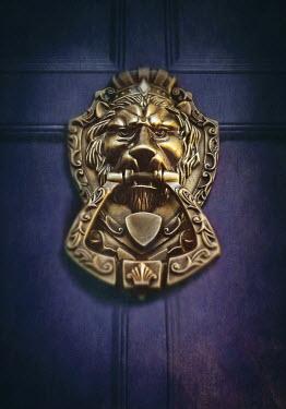 Lyn Randle GOLDEN LION DOOR KNOCKER Building Detail