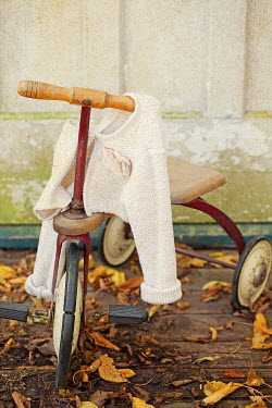 Alison Archinuk VINTAGE TRICYCLE AND GIRLS SWEATER Miscellaneous Transport