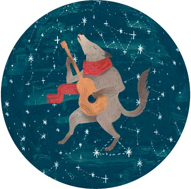 Gonzalo Martinez Moreno WOLF PLAYING GUITAR WITH STARRY SKY