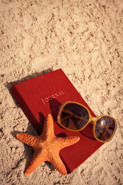 Emma Goulder JOURNAL, SUNGLASSES AND STARFISH ON SANDY BEACH Miscellaneous Objects