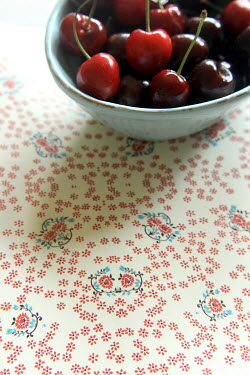 Nicole Wustrack BOWL OF RED CHERRIES ON FLORAL SURFACE Miscellaneous Objects