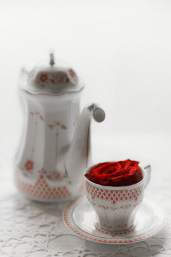 Ildiko Neer RED FLOWER IN VINTAGE TEACUP NEAR TEAPOT Miscellaneous Objects