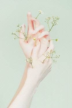 Tijana Moraca YOUNG WOMANS HANDS WITH DELICATE FLOWERS Body Detail