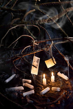 Maria Petkova CANDLES UNDER PHOTOS TIED TO TREE BRANCHES Miscellaneous Objects