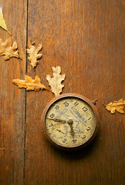 Metra Stelmahere RUSTY ANTIQUE POCKET WATCH AND AUTUMN LEAVES Miscellaneous Objects