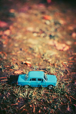 Magdalena Russocka BLUE MODEL TOY CAR ON GRASS Miscellaneous Objects