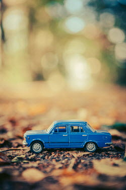 Magdalena Russocka BLUE MODEL TOY CAR ON LEAVES Miscellaneous Objects