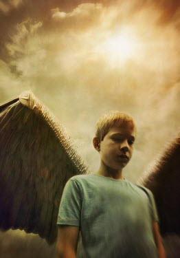 Lyn Randle YOUNG BLOND BOY WITH ANGEL WINGS Children