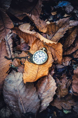 Nic Skerten POCKET WATCH ON AUTUMN LEAVES Miscellaneous Objects