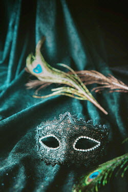 Drunaa MASK AND PEACOCK FEATHERS ON VELVET Miscellaneous Objects