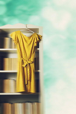 Ildiko Neer YELLOW DRESS HANGING FROM BOOKCASE Miscellaneous Objects