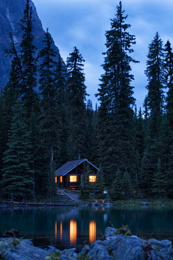 Viktoria Haack CABIN IN THE WOODS Trees/Forest