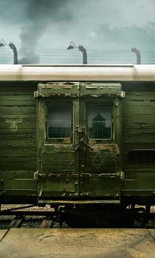 Stephen Mulcahey A prisoner train at Birkenau, Railways/Trains