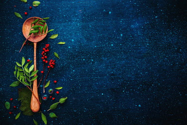 Dina Belenko ROUND WOODEN SPOON AND RED BERRIES Miscellaneous Objects